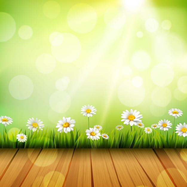 Fond de printemps Vecteur gratuit