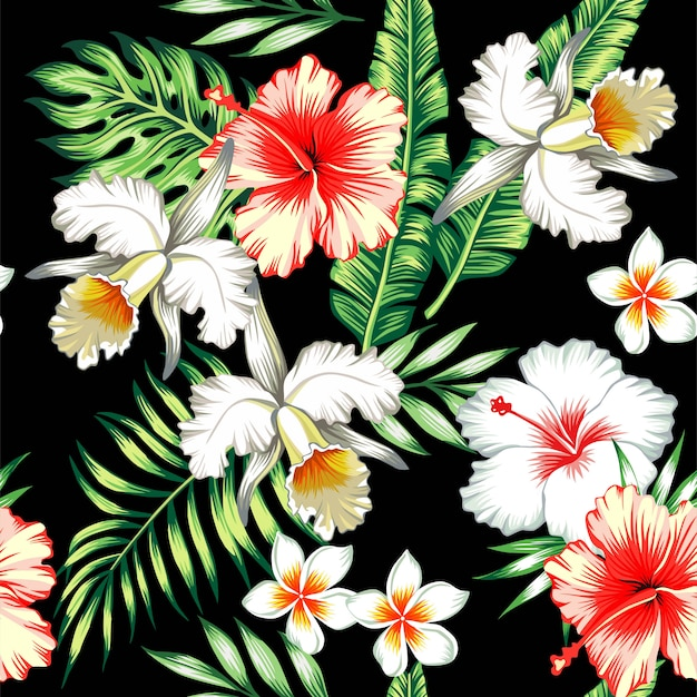 Fond sans couture tropical d'hibiscus et d'orchidées Vecteur Premium