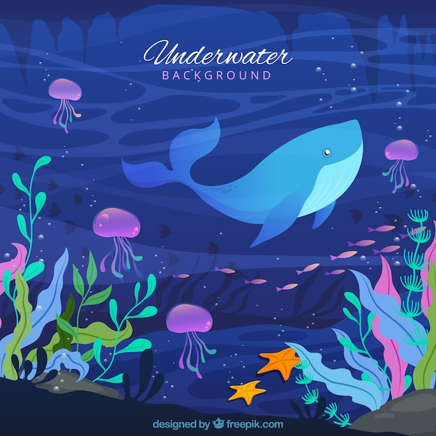 Fond sous-marin avec des caricatures d'animaux aquatiques Vecteur gratuit