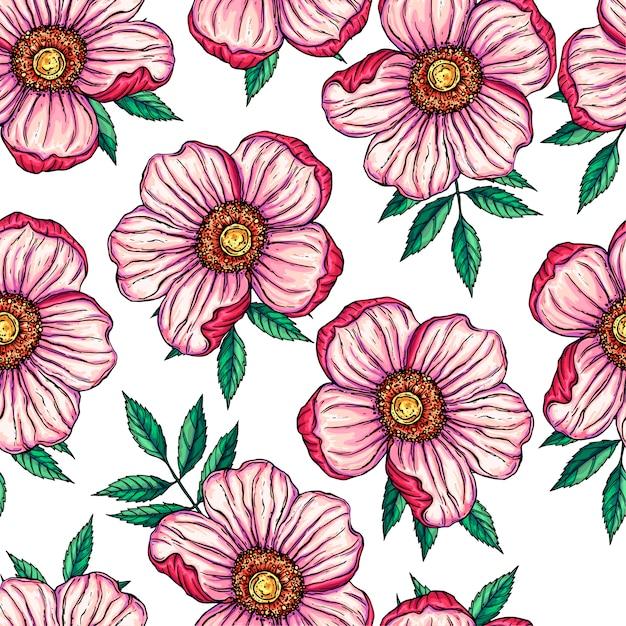 Fond transparent avec des fleurs roses sauvages Vecteur Premium