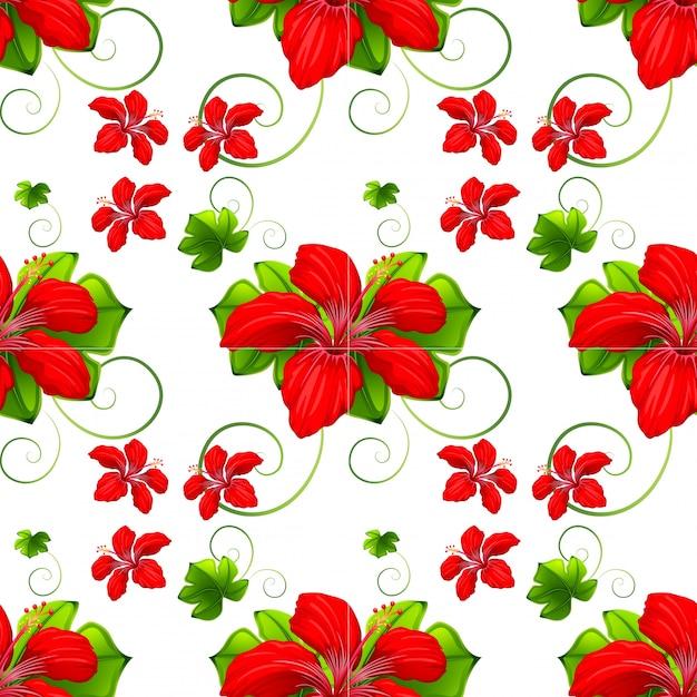 Fond transparent avec des fleurs rouges