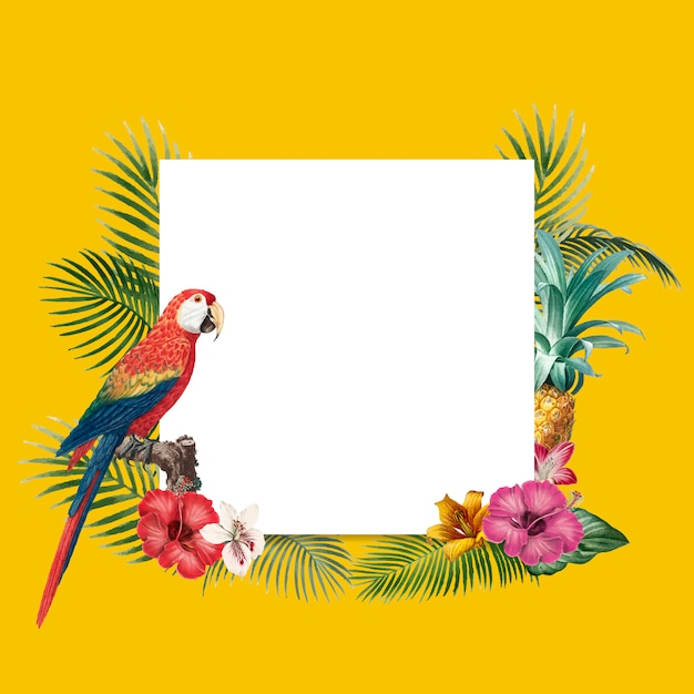 Fond tropical blanc Vecteur gratuit