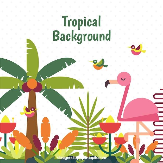 Fond tropical coloré avec un design plat Vecteur gratuit