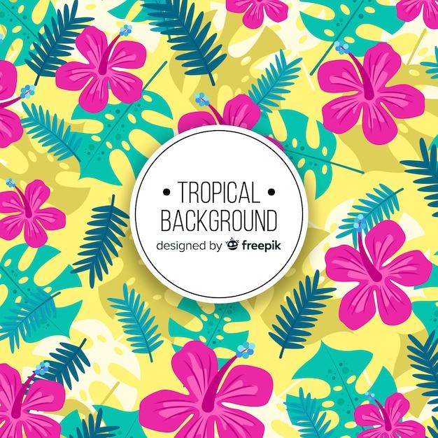 Fond tropical coloré Vecteur gratuit