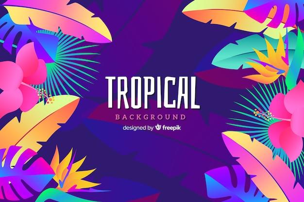 Fond tropical dégradé Vecteur gratuit