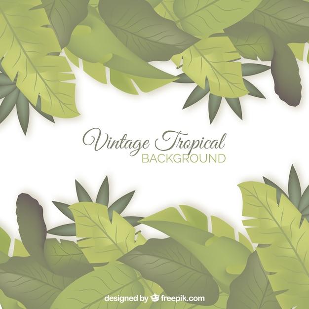 Fond tropical avec un design vintage Vecteur gratuit
