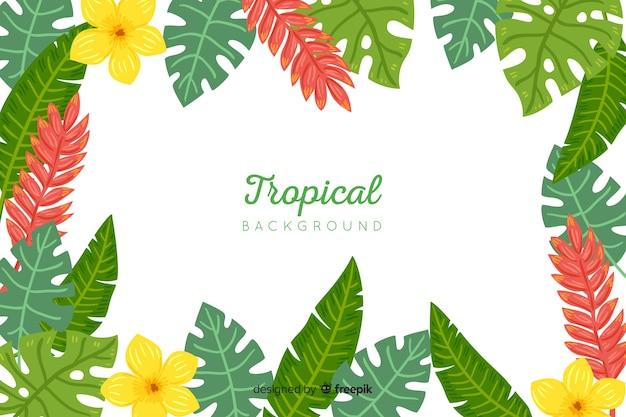 Fond tropical dessiné à la main Vecteur gratuit