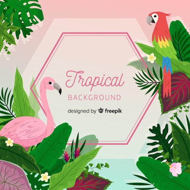 Fond tropical avec perroquet et flamant rose Vecteur gratuit