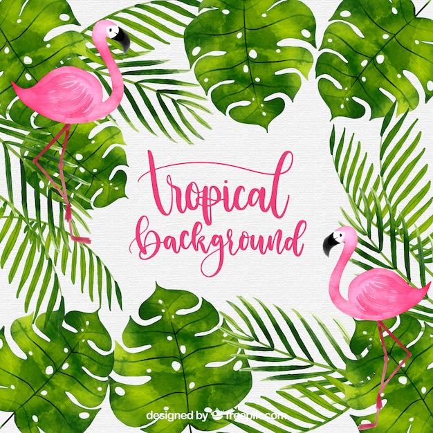 Fond tropical avec des plantes aquarelles et des flamants roses Vecteur gratuit