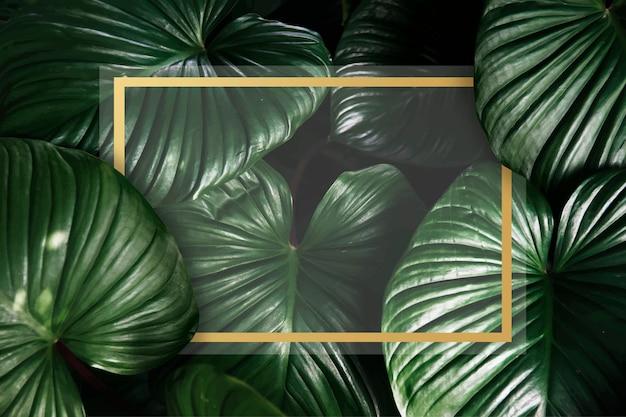 Fond tropical vert Vecteur gratuit