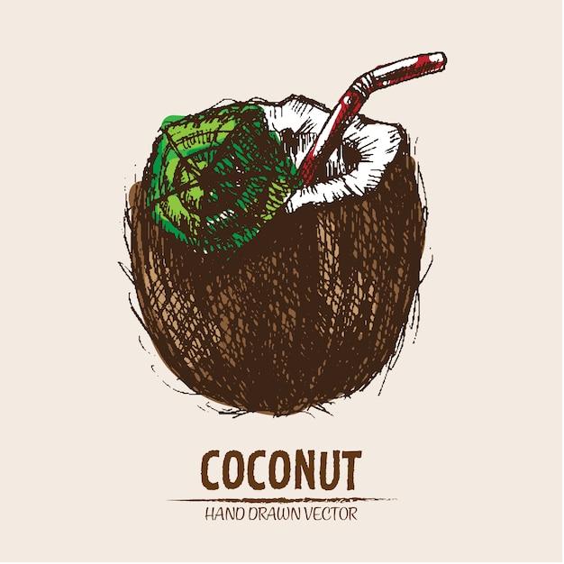 Fond de verre à la main tiré à la noix de coco | Télécharger