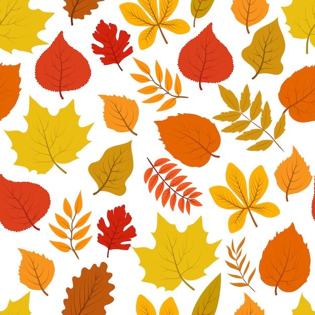 Forêt d'automne doré laisse transparente motif automnal Vecteur Premium