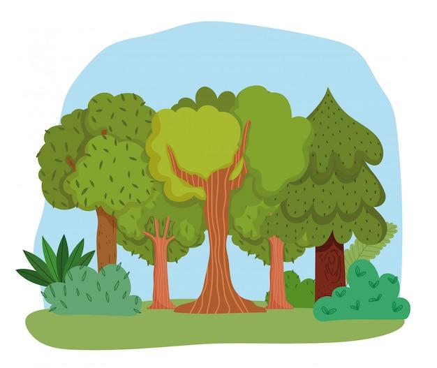 Forêt De Dessin Animé Avec Des Buissons Et Des Arbres Vecteur Premium