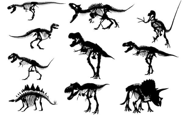 Fossiles De Dinosaure Silhouette Vecteur Premium