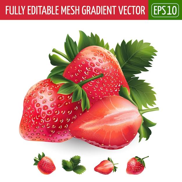 Fraise Sur Fond Blanc. Illustration Vectorielle Vecteur Premium
