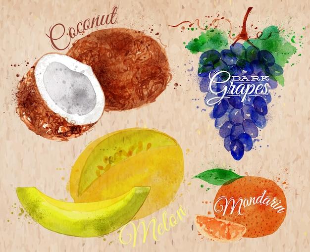 Fruit aquarelle noix de coco, melon, mandarine, kraft Vecteur Premium