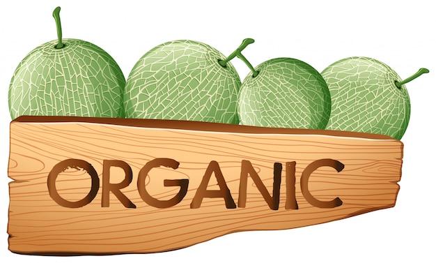Fruits cantaloups et enseigne bio Vecteur gratuit