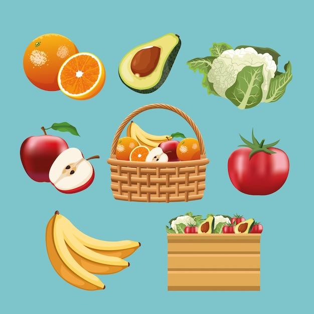 Fruits et légumes Vecteur Premium