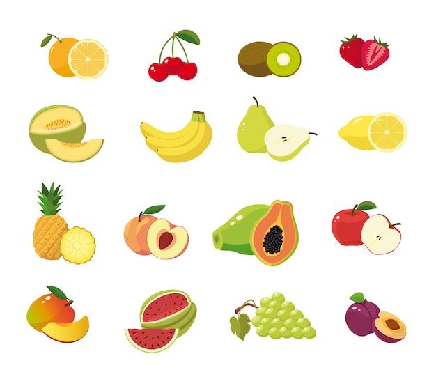 Fruits mis en fond blanc Vecteur Premium