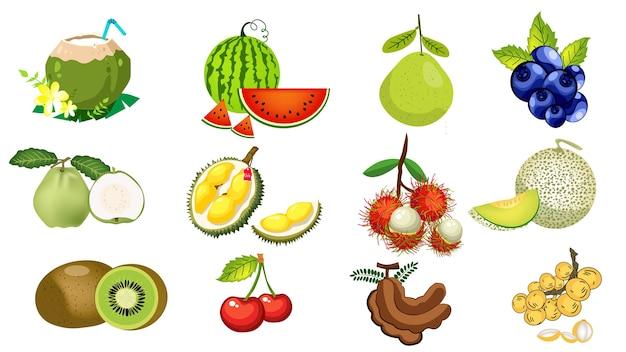 Les fruits de la thaïlande sont le ramboutan, le durian, la goyave, la pastèque, le tamarin et la noix de coco. Vecteur Premium