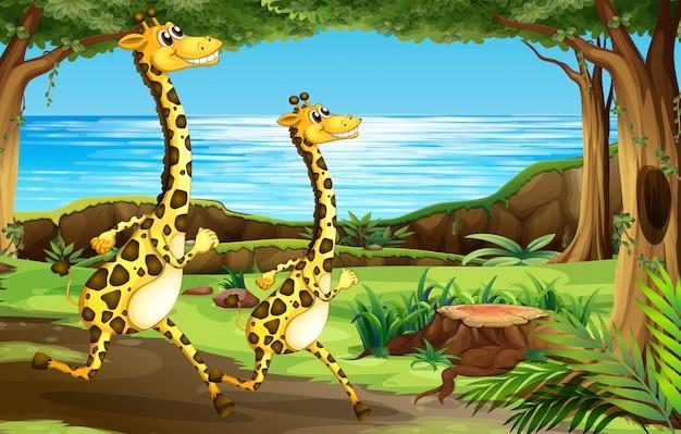 Girafe courant dans la forêt Vecteur gratuit