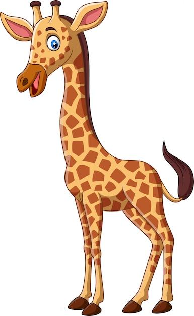 Image De Girafe Dessin