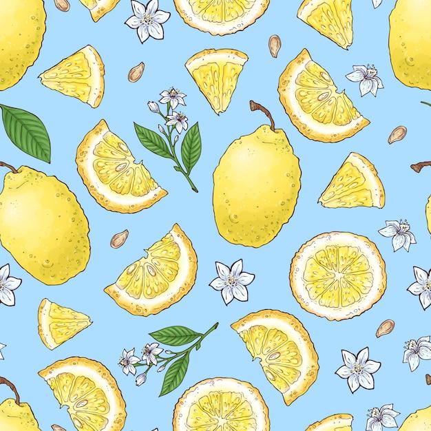 Glace aux agrumes et fruits colorés au citron Vecteur Premium