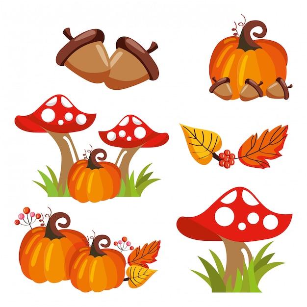 Glands, potiron, champignons, feuilles, tombant Vecteur Premium