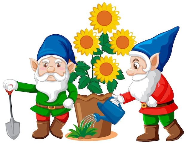 Gnomes Avec Pot De Fleur En Style Cartoon Sur Fond Blanc Vecteur gratuit