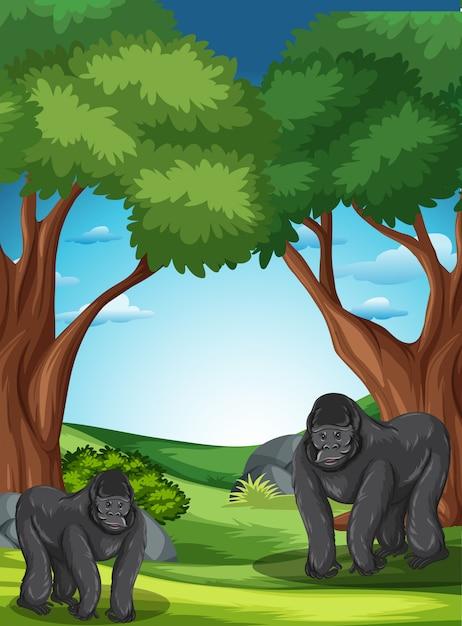 Gorille à l'état sauvage Vecteur gratuit