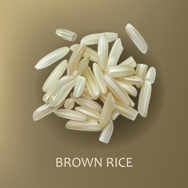Grains de riz brun Vecteur gratuit