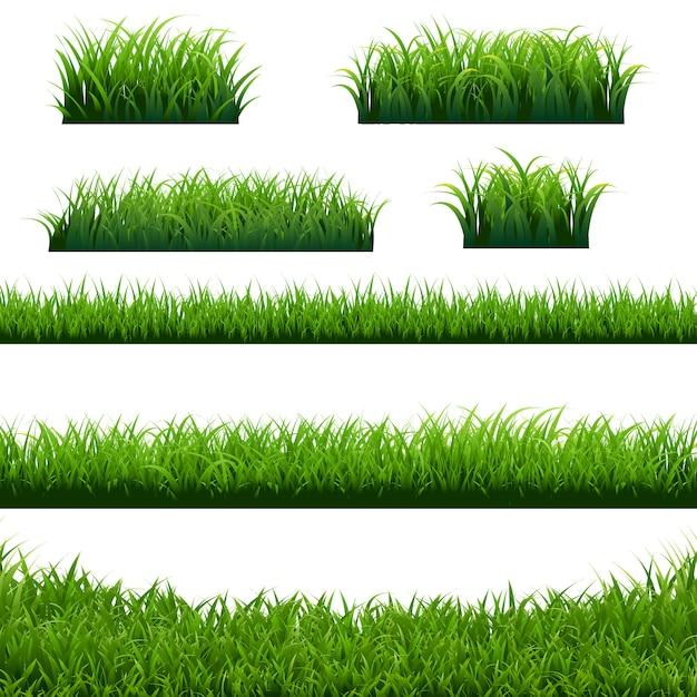 Grand ensemble de bordures d'herbe verte Vecteur Premium