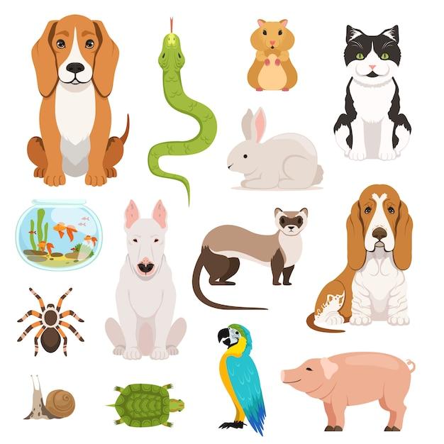 Grand vecteur défini de différents animaux domestiques. chats, chiens, hamsters et autres animaux de compagnie dans un style bande dessinée Vecteur Premium