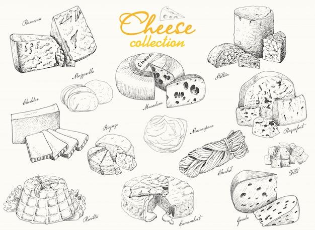 Grande collection de fromages variés Vecteur Premium