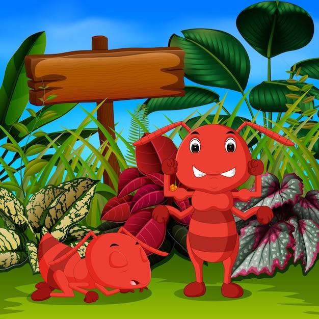 Grande fourmi dormir dans le jardin et son ami en colère Vecteur Premium
