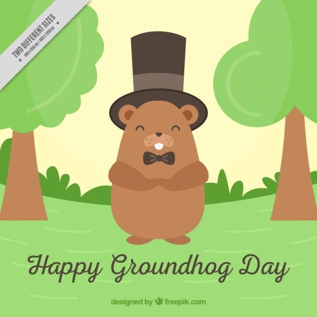 Groundhog fond de jour avec le chapeau supérieur Vecteur gratuit