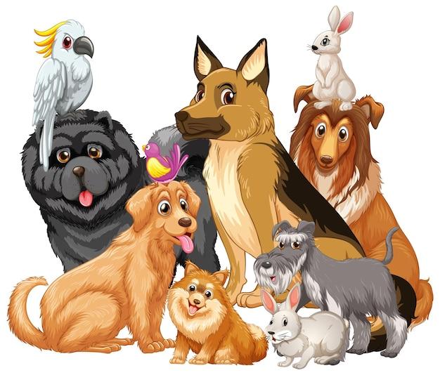 Groupe D'animal De Compagnie Sur Fond Blanc Vecteur gratuit