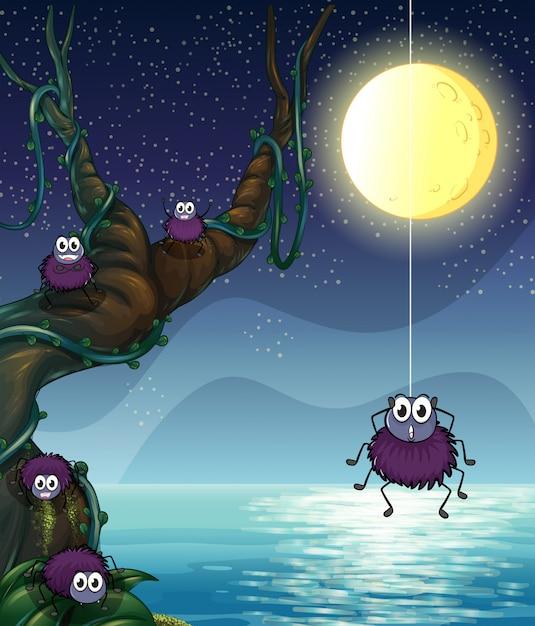 Un groupe d'araignées Vecteur gratuit