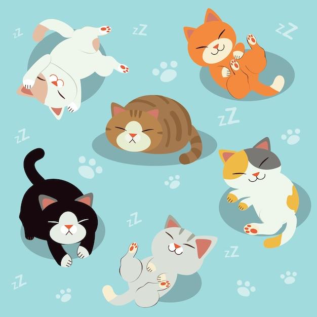Un groupe de chat mignon. chat somnolent. chat relaxant. temps de repos. Vecteur Premium