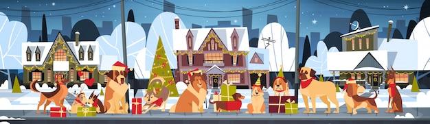 Groupe de chiens dans des chapeaux de père noël à l'extérieur près des maisons décorées se marier avec noël Vecteur Premium
