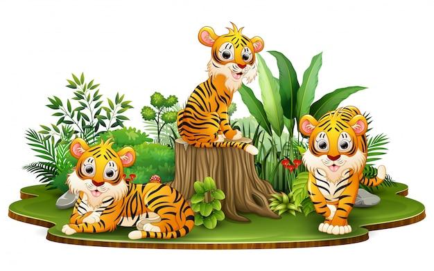 Groupe de dessin animé de tigre dans le parc avec des plantes vertes Vecteur Premium