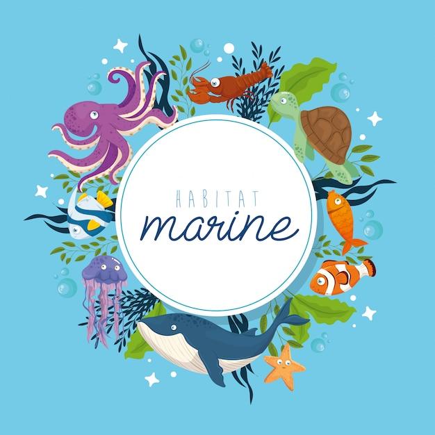 Habitat Marin, Animaux Dans L'océan, Habitants Du Monde Marin, Créatures Sous-marines Mignonnes, Faune Sous-marine Vecteur Premium