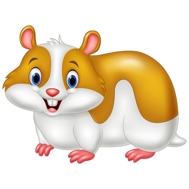 Hamster Drole De Dessin Anime Vecteur Premium
