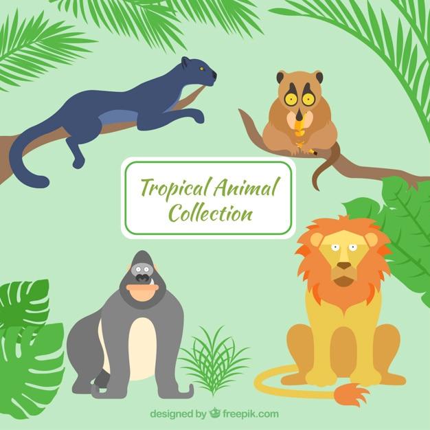 Hand drawn animaux sauvages dans la jungle Vecteur gratuit
