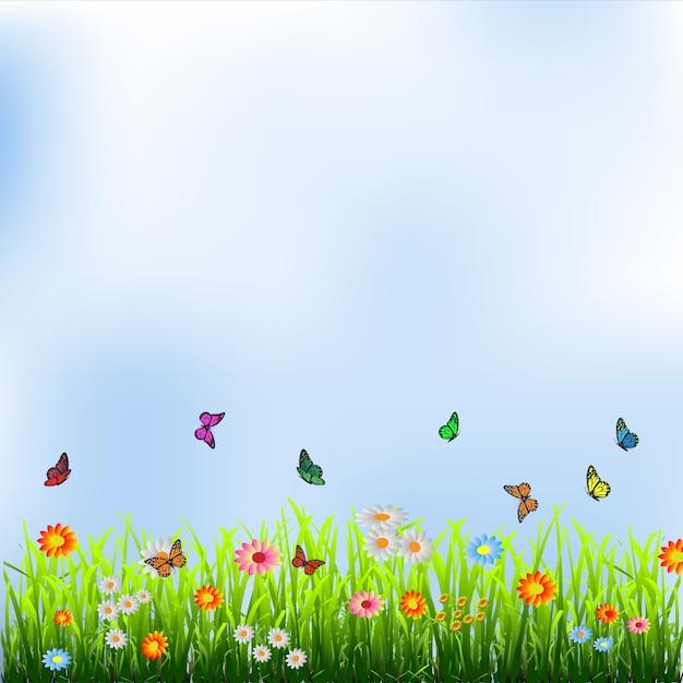 Herbe verte, fleurs et papillons Vecteur Premium