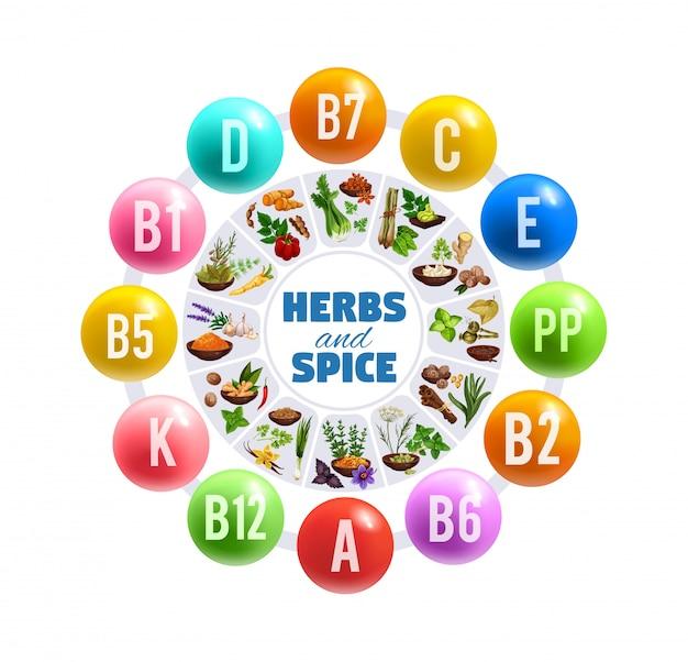 Herbes Basilic, Vitamines Vanille Et Poivre Vecteur Premium