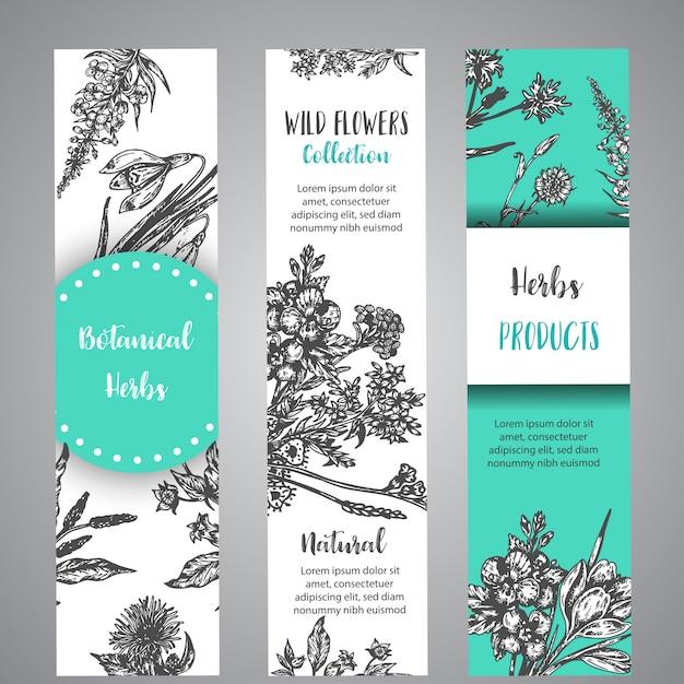 Herbes dessinées à la main et bannières de fleurs sauvages collection florale vintage avec des fleurs sauvages Vecteur Premium