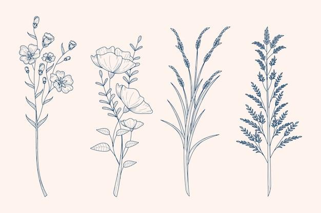 Herbes Et Fleurs Sauvages Dessinant Dans Un Style Vintage Vecteur gratuit