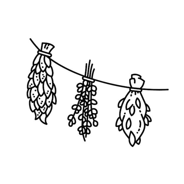 Herbes Séchées Ornement Illustration De Style Vecteur Plat Vecteur Premium