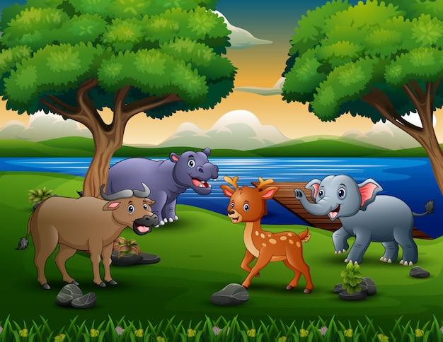 Heureux animal différent jouant au bord de la rivière Vecteur Premium